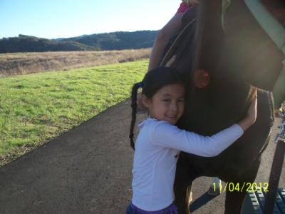 Ponies R Us | Martinez, CA | Pony Rides | Photo #6