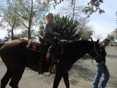 Ponies R Us | Martinez, CA | Pony Rides | Photo #10