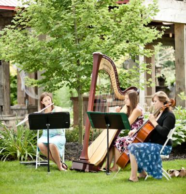 The Soenen Sisters - Harp, Flute, and Cello | Hamilton, ON | Classical Trio | Photo #9