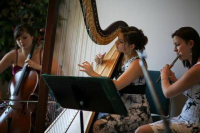 The Soenen Sisters - Harp, Flute, and Cello | Hamilton, ON | Classical Trio | Photo #2