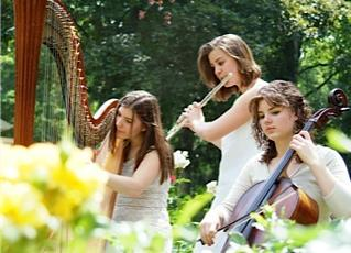 The Soenen Sisters - Harp, Flute, and Cello | Hamilton, ON | Classical Trio | Photo #1