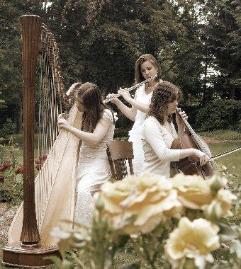 The Soenen Sisters - Harp, Flute, and Cello | Hamilton, ON | Classical Trio | Photo #16
