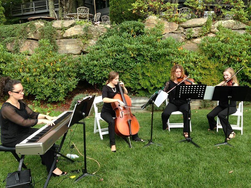 Quartet at a wedding in Boone, NC