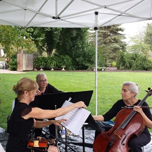 Merom Chamber Music Duo | Phyllis & Friends Trio/Duo/Quartet/Band