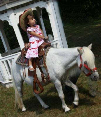 ABC Pony Rides and petting zoo | Neshanic Station, NJ | Pony Rides | Photo #1
