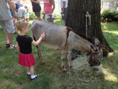 ABC Pony Rides and petting zoo | Neshanic Station, NJ | Pony Rides | Photo #4
