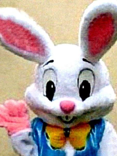Easter Bunny (vest not available)