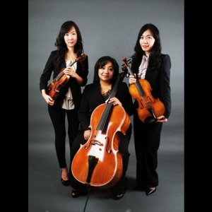 Amaris Trio - Chamber Music Quartet - Reston, VA