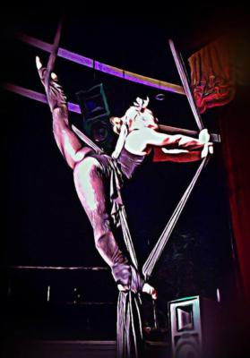 Hope and Roilan | Las Vegas, NV | Circus Act | Photo #19