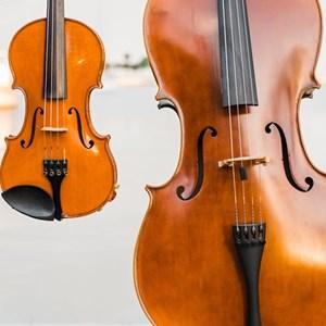 Best String Quartets in Sarasota, FL