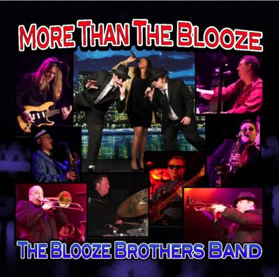 Blooze Brothers Band | Chicago, IL | Blues Brothers Tribute Band | Photo #2