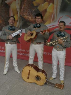Mariachi El Rey | Pompano Beach, FL | Mariachi Band | Photo #14