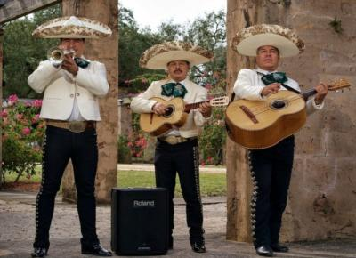 Mariachi El Rey | Pompano Beach, FL | Mariachi Band | Photo #7