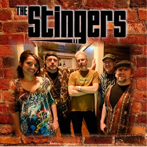 South Bend Rock Band | The Stingers