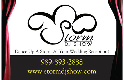 Storm DJ Show / Absolutely Amazing DJs Bay City  - Mobile DJ - Bay City, MI