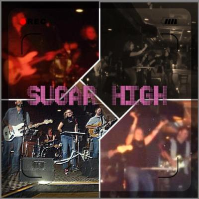 Sugar High | Novi, MI | Cover Band | Photo #1