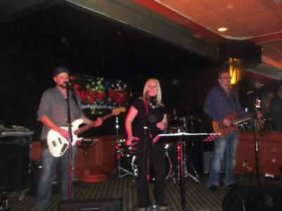 Sugar High | Novi, MI | Cover Band | Photo #5
