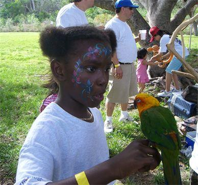 partyparrots | Palm Bay, FL | Animals For Parties | Photo #14