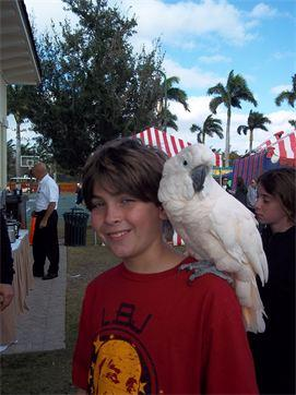 partyparrots | Palm Bay, FL | Animals For Parties | Photo #11