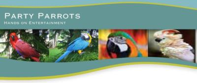 partyparrots | Palm Bay, FL | Animals For Parties | Photo #24