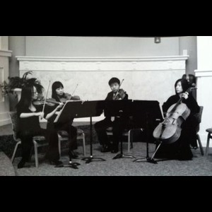 Carter Chamber Music Quartet | Joy Strings