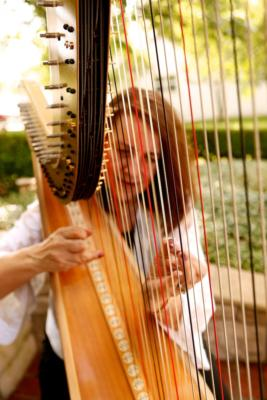 Margaret Atkinson -  4 The Dallas Strings | Dallas, TX | Harp | Photo #1