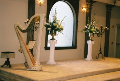 Margaret Atkinson -  4 The Dallas Strings | Dallas, TX | Harp | Photo #7