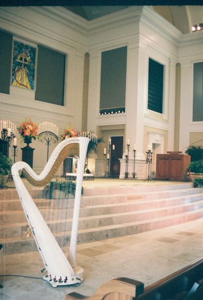 Margaret Atkinson -  4 The Dallas Strings | Dallas, TX | Harp | Photo #8