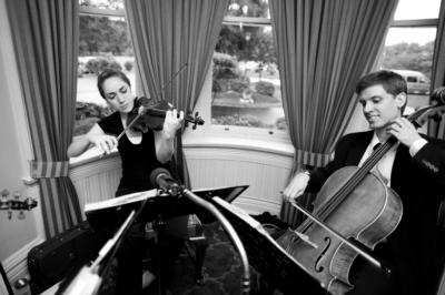 Tea-Time Serenade | Ashburn, VA | Pop String Quartet | Photo #9