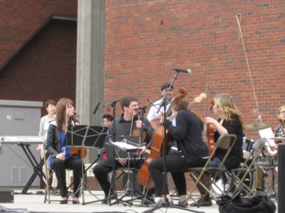 Videri String Quartet | Boston, MA | Classical String Quartet | Photo #5