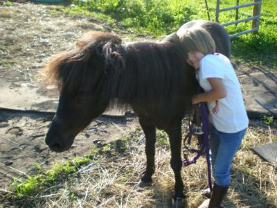 Little Dude Ranch | Marion, NY | Pony Rides | Photo #22