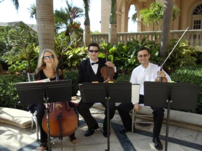 Royal Palm Strings - Solo | Saint Petersburg, FL | Violin | Photo #7