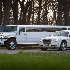 Techny Wedding Limo | New Image Limo