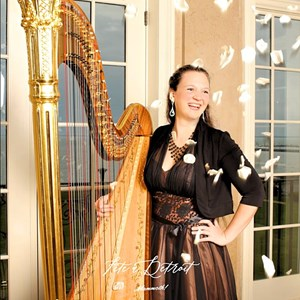 West Bloomfield, MI Harpist | Chanah Ambuter: Michigan Harpist
