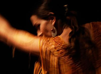 Yolit Flamenco | Washington, DC | Flamenco Dancer | Photo #5