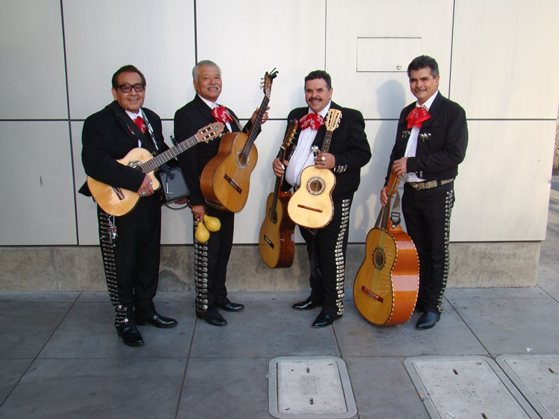 LOS DOMINOS/ mini mariachi - Latin Band - San Jose, CA