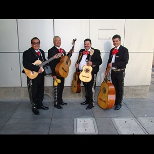 San Jose Latin Band | LOS DOMINOS/ mini mariachi