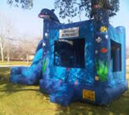 GBAIX | Friendswood, TX | Bounce House | Photo #9
