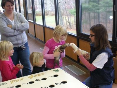 Wildlife Educators Coalition | Rochester, NY | Animals For Parties | Photo #18