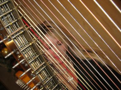 Laurie Leigh Harpist | Saint Paul, MN | Harp | Photo #10
