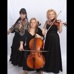 Beale AFB String Quartet | Harmony Strings