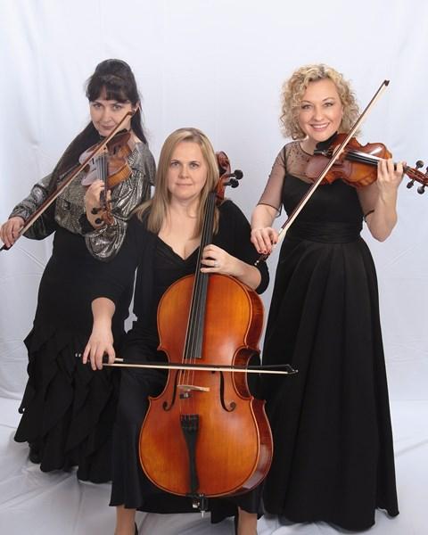 Harmony Strings - String Quartet Sacramento, CA   GigMasters