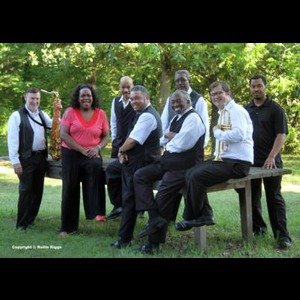 Courtland Motown Band | The King Beez