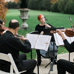 Franklin Chamber Music Quartet | Golden Scroll Soloists