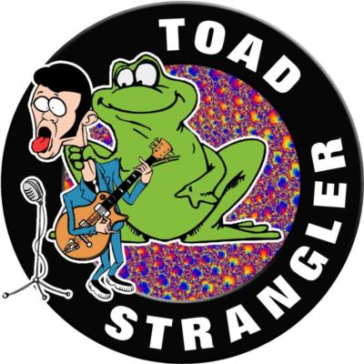 Toad Strangler | Bowling Green, KY | Blues Band | Photo #11