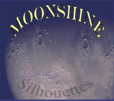 Moonshine | Melrose, WI | Country Acoustic Guitar | Photo #5