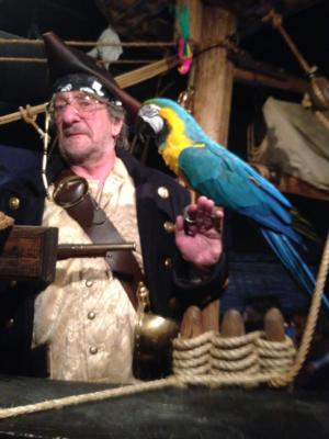 Jim & Bob Entertainment | Fitchburg, WI | Pirate Party | Photo #21