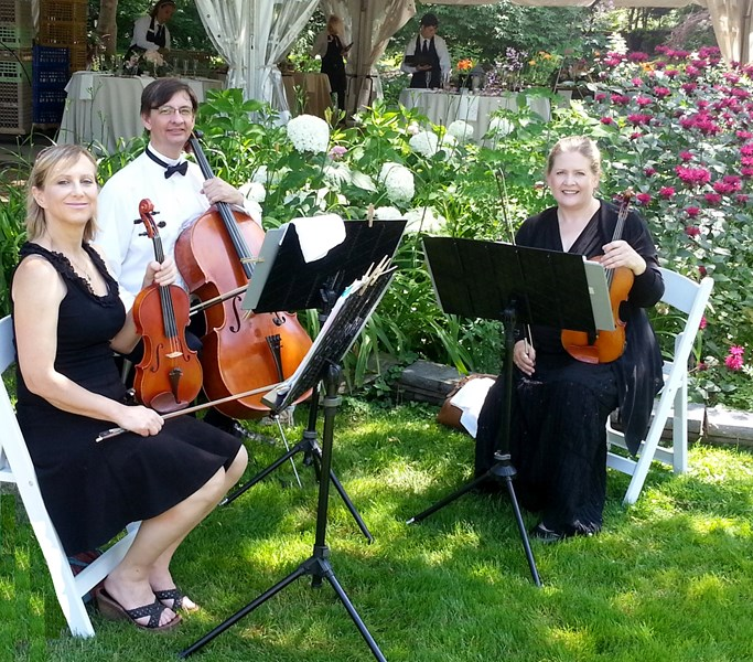 All Trillium Ensembles - String Quartet - Minneapolis, MN