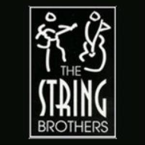 Frewsburg Classical Duo | The String Brothers