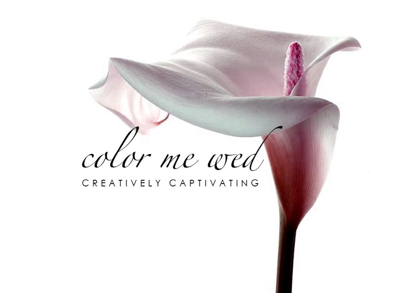 Color Me Wed - Videographer - Atlanta, GA